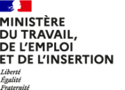 ministere travail emploi insertion